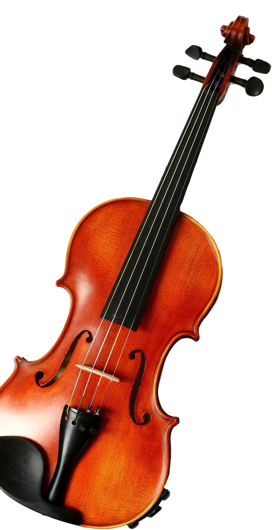Violin22